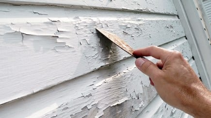 Paint Preparation