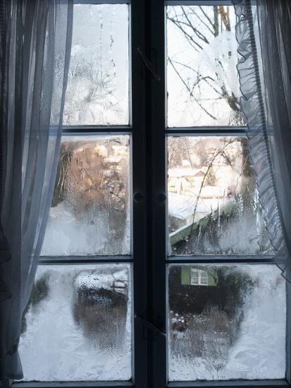 Window in the winter